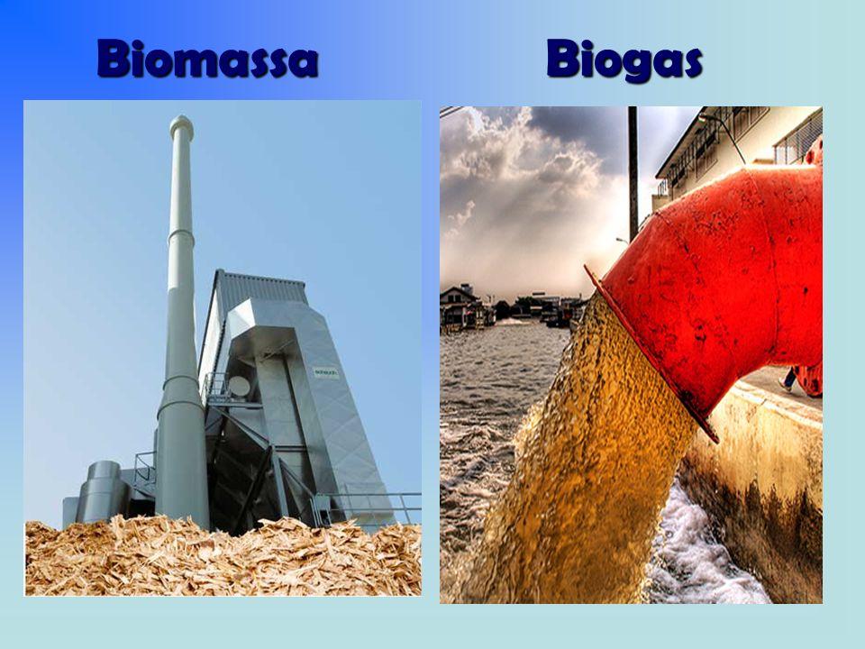 Biomassa Biogas