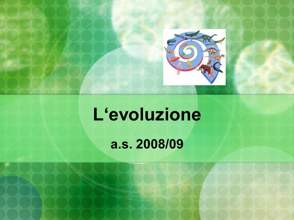 L'evoluzione a.s. 2008/09