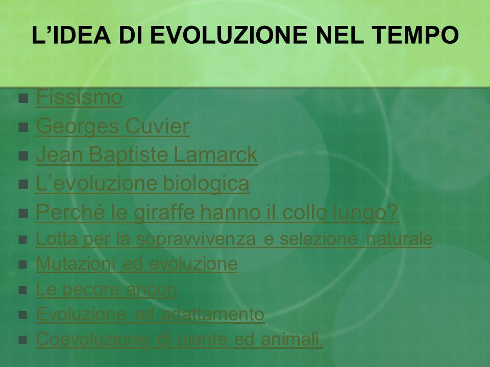 L'IDEA DI EVOLUZIONE NEL TEMPO