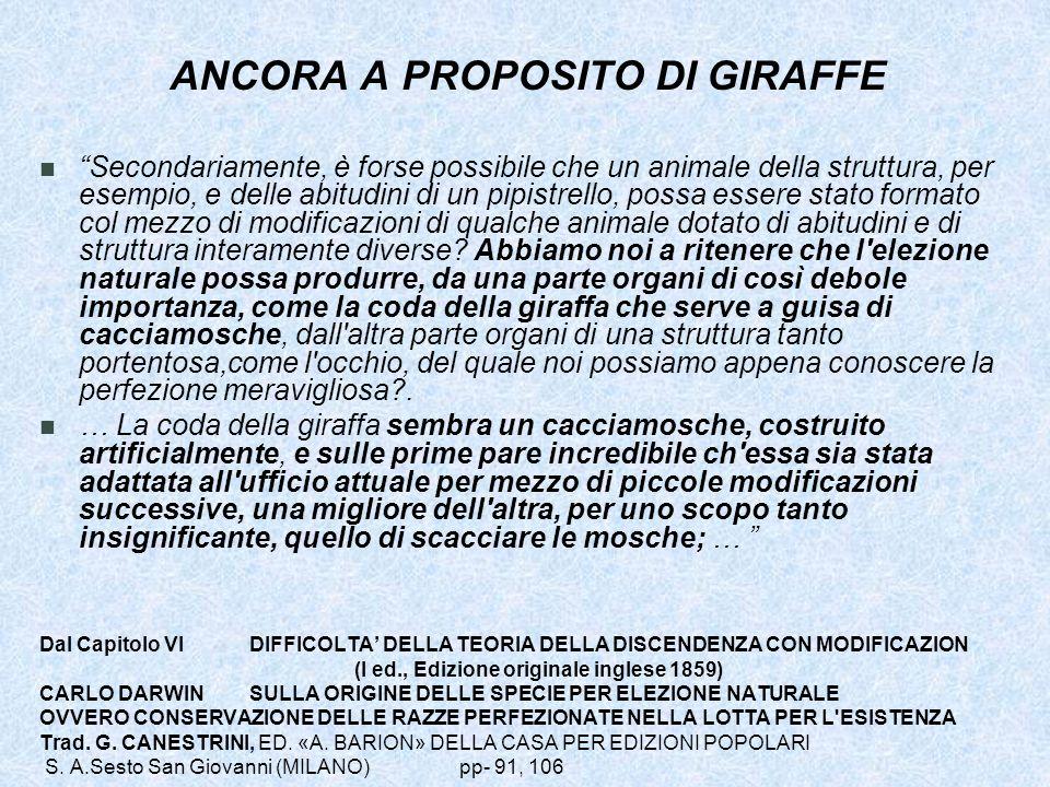 ANCORA A PROPOSITO DI GIRAFFE