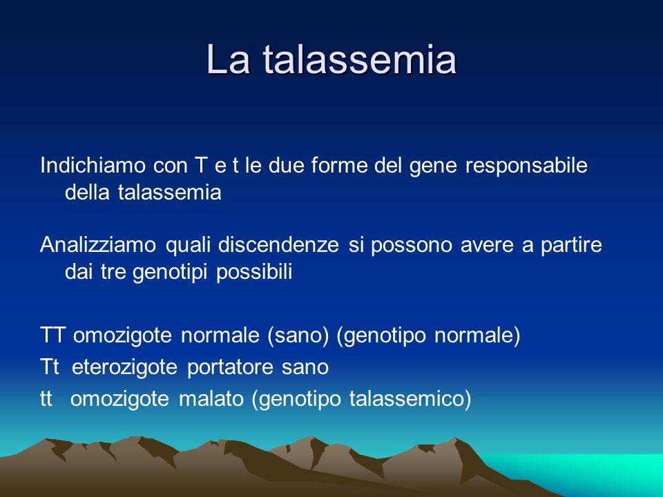 La talassemia Indichiamo con T e t le due forme del gene responsabile della talassemia.