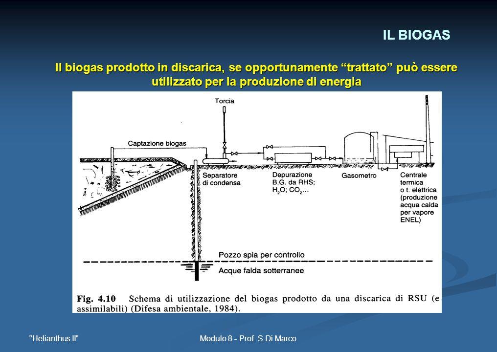 IL BIOGASIl biogas prodotto in discarica, se opportunamente trattato può essere utilizzato per la produzione di energia.