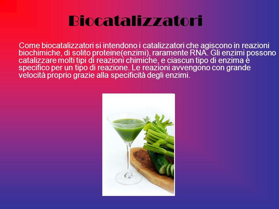Biocatalizzatori