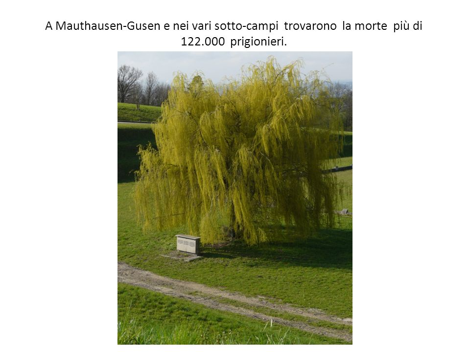 A Mauthausen-Gusen e nei vari sotto-campi trovarono la morte più di 122.000 prigionieri.