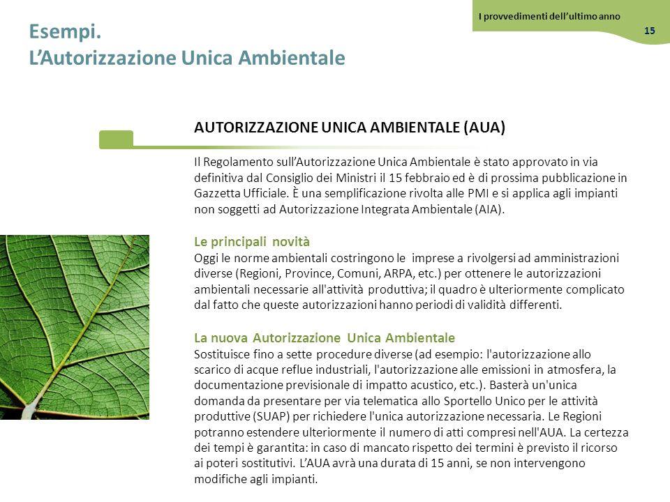 L'Autorizzazione Unica Ambientale
