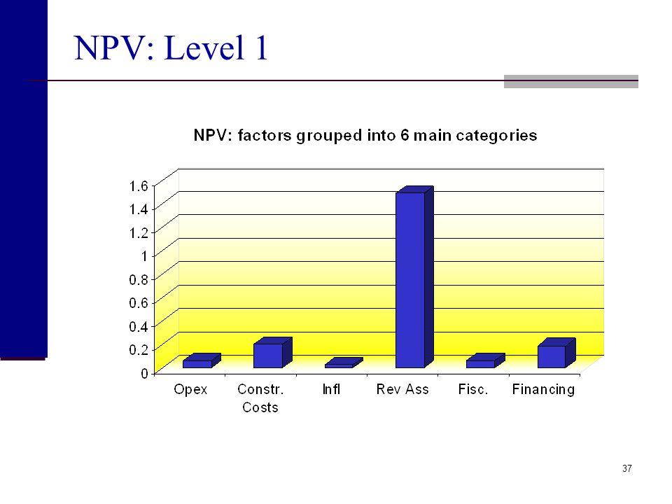 NPV: Level 1