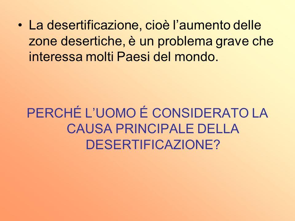 La desertificazione, cioè l'aumento delle zone desertiche, è un problema grave che interessa molti Paesi del mondo.