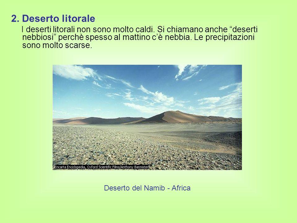 Deserto del Namib - Africa