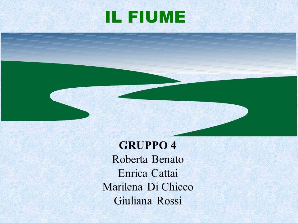 IL FIUME GRUPPO 4 Roberta Benato Enrica Cattai Marilena Di Chicco