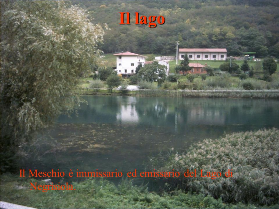 Il lago Il Meschio è immissario ed emissario del Lago di Negrisiola.