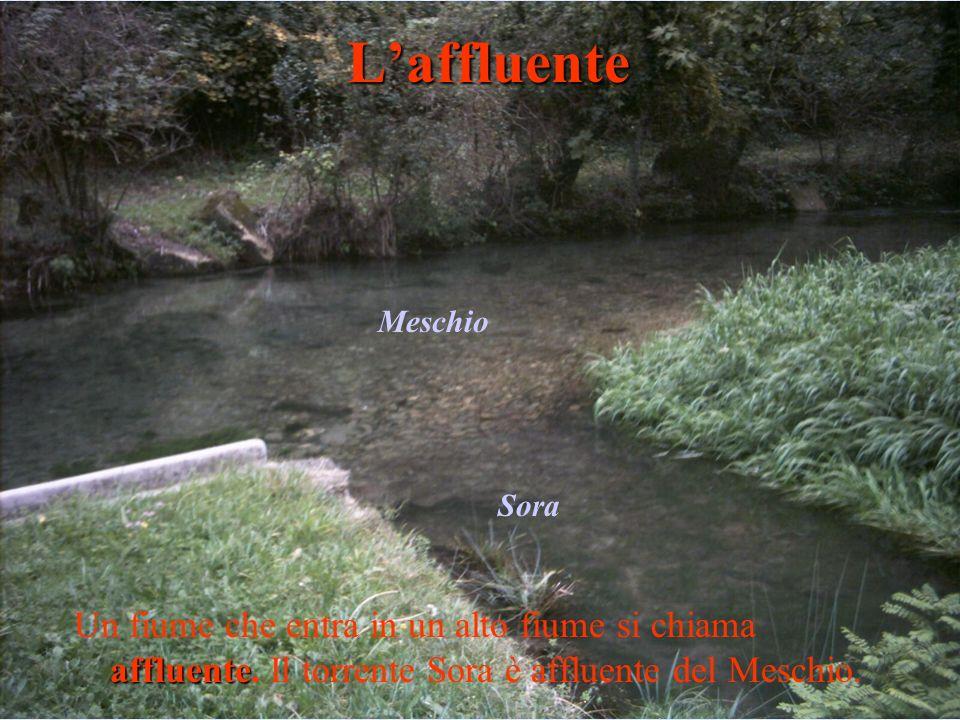 L'affluente Meschio. Sora. Un fiume che entra in un alto fiume si chiama affluente.