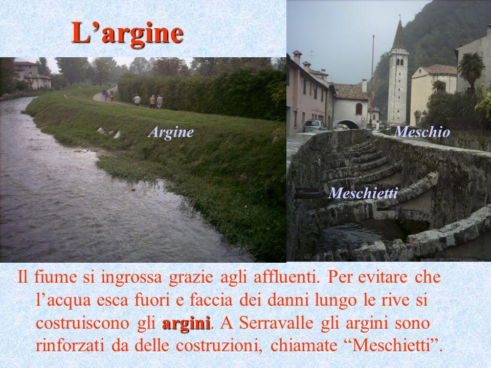 L'argine Argine. Meschio. Meschietti.