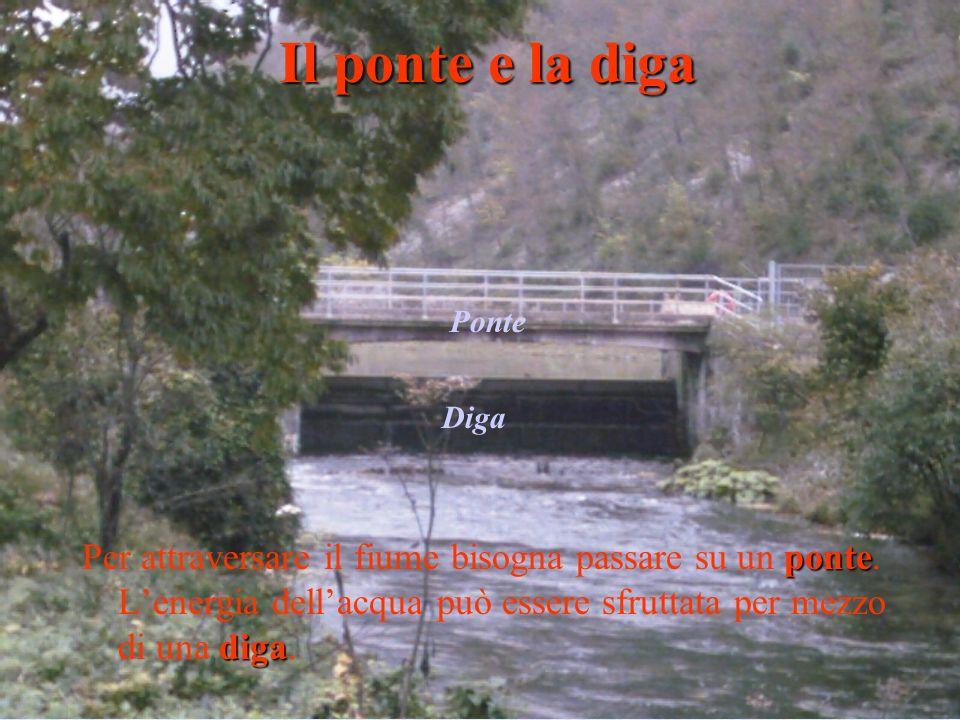 Il ponte e la diga Ponte. Diga.