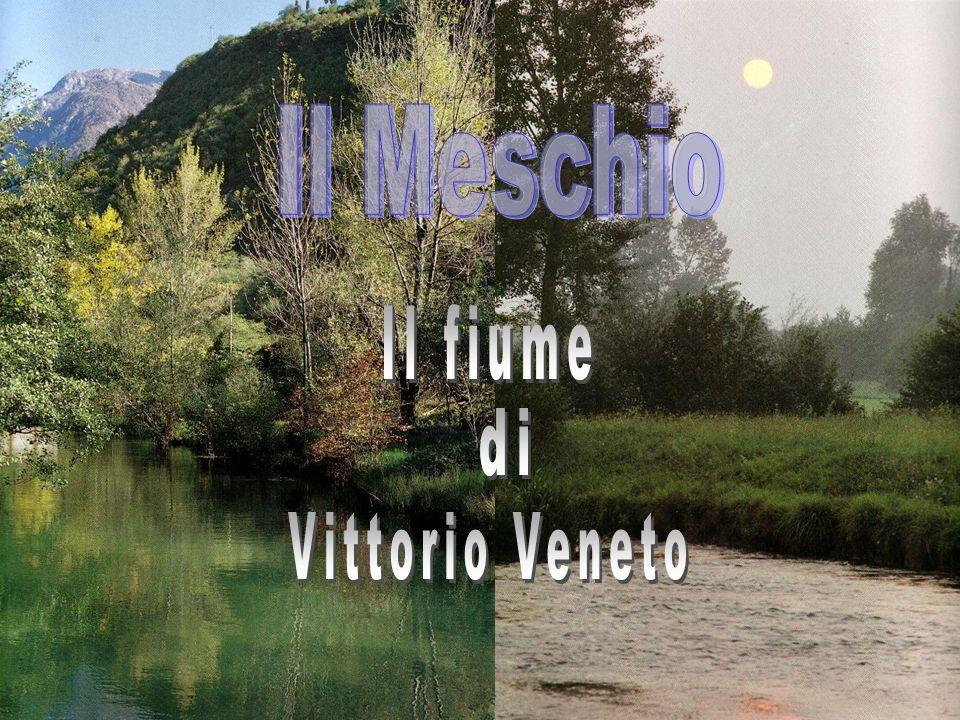 Il Meschio Il fiume di Vittorio Veneto