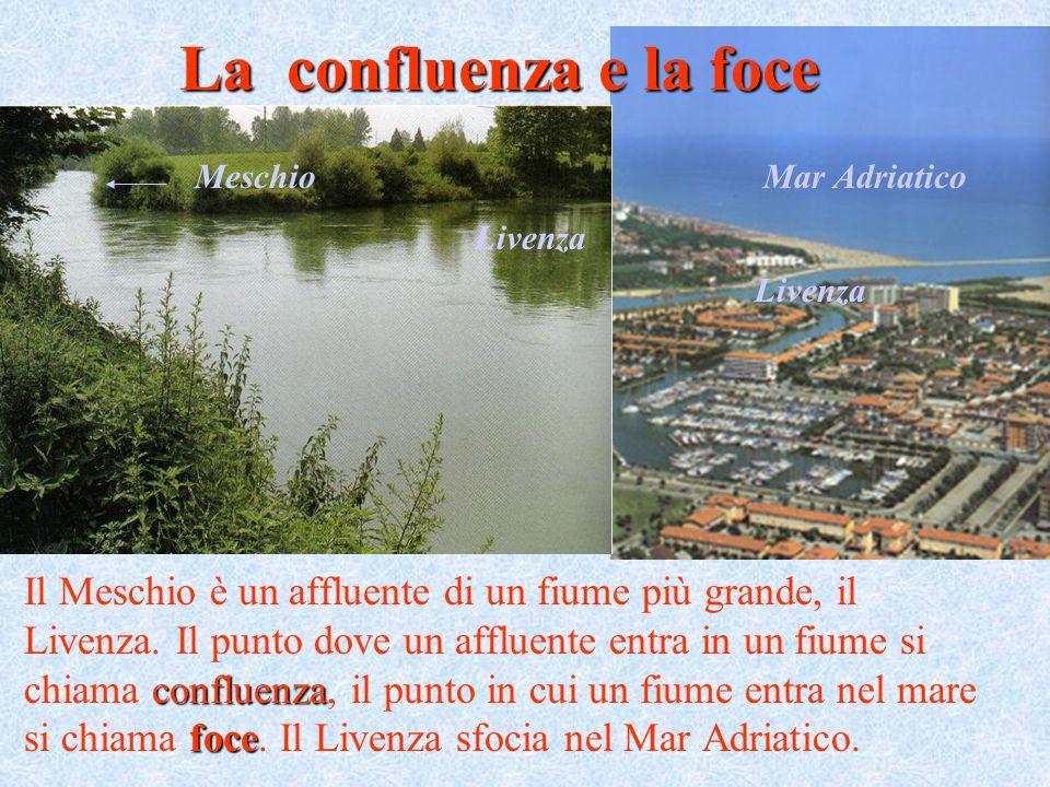 La confluenza e la foce Meschio. Mar Adriatico. Livenza. Livenza.