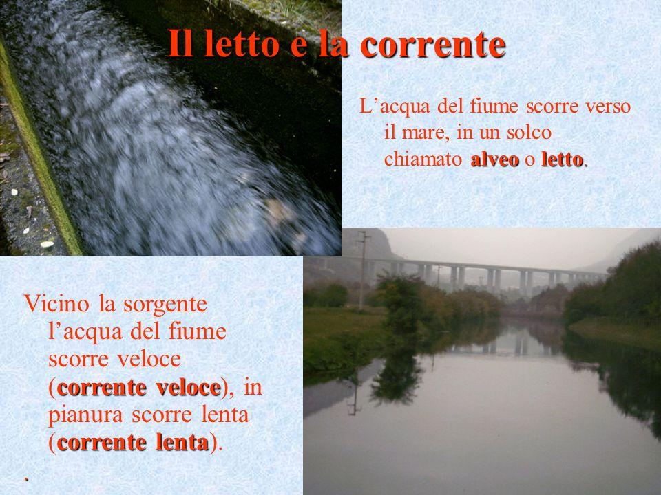 Il letto e la corrente L'acqua del fiume scorre verso il mare, in un solco chiamato alveo o letto.