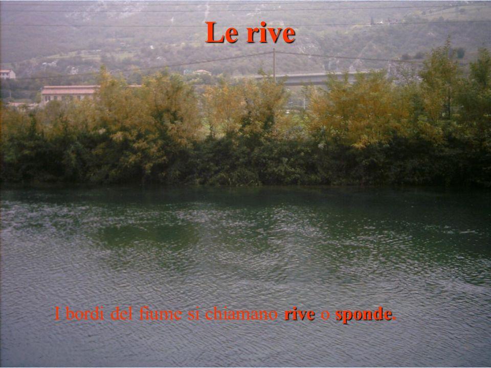 Le rive I bordi del fiume si chiamano rive o sponde.