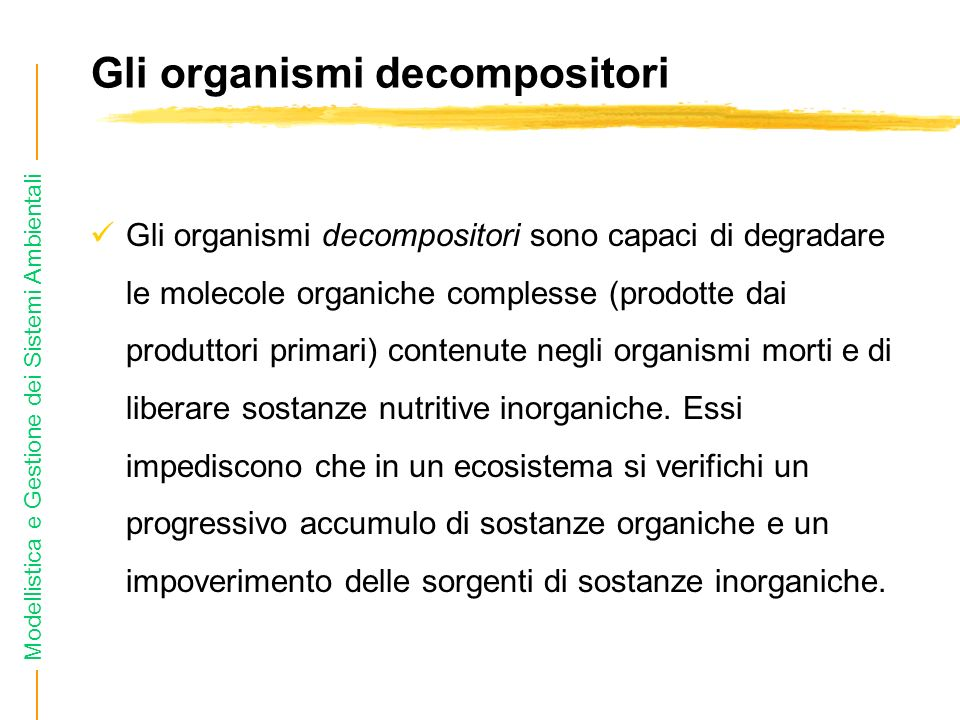 Gli organismi decompositori