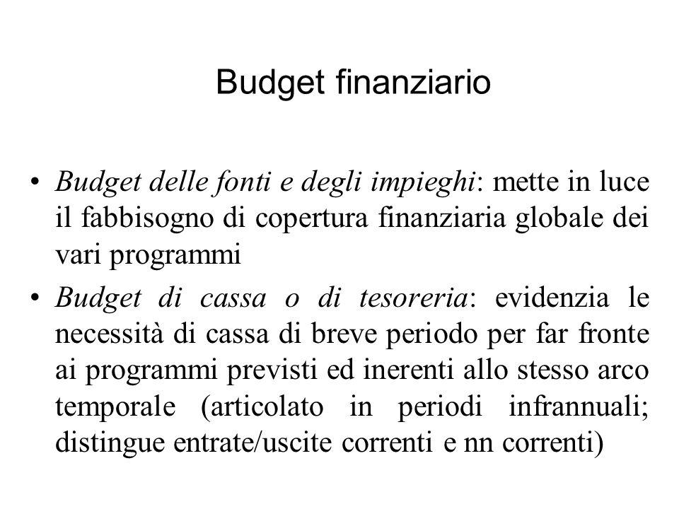 Budget finanziario Budget delle fonti e degli impieghi: mette in luce il fabbisogno di copertura finanziaria globale dei vari programmi.