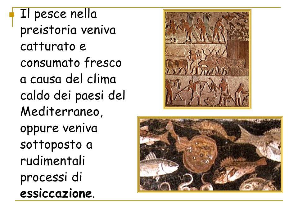 Il pesce nella preistoria veniva catturato e consumato fresco a causa del clima caldo dei paesi del Mediterraneo, oppure veniva sottoposto a rudimentali processi di essiccazione.
