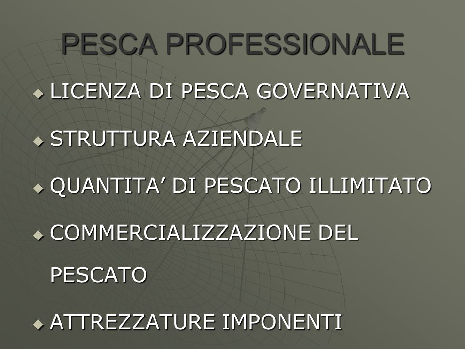 PESCA PROFESSIONALE LICENZA DI PESCA GOVERNATIVA STRUTTURA AZIENDALE