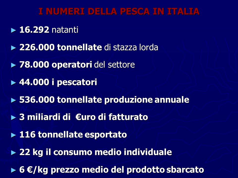 I NUMERI DELLA PESCA IN ITALIA