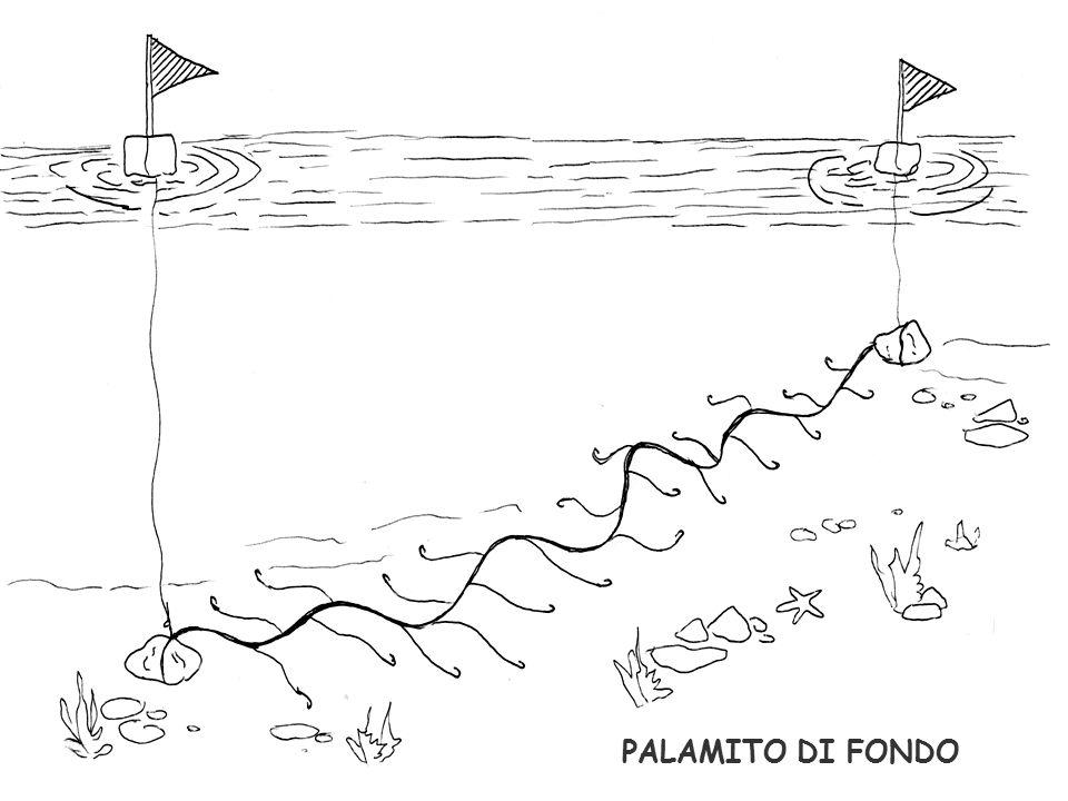 PALAMITO DI FONDO