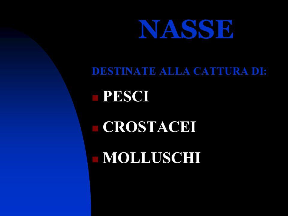 NASSE DESTINATE ALLA CATTURA DI: PESCI CROSTACEI MOLLUSCHI