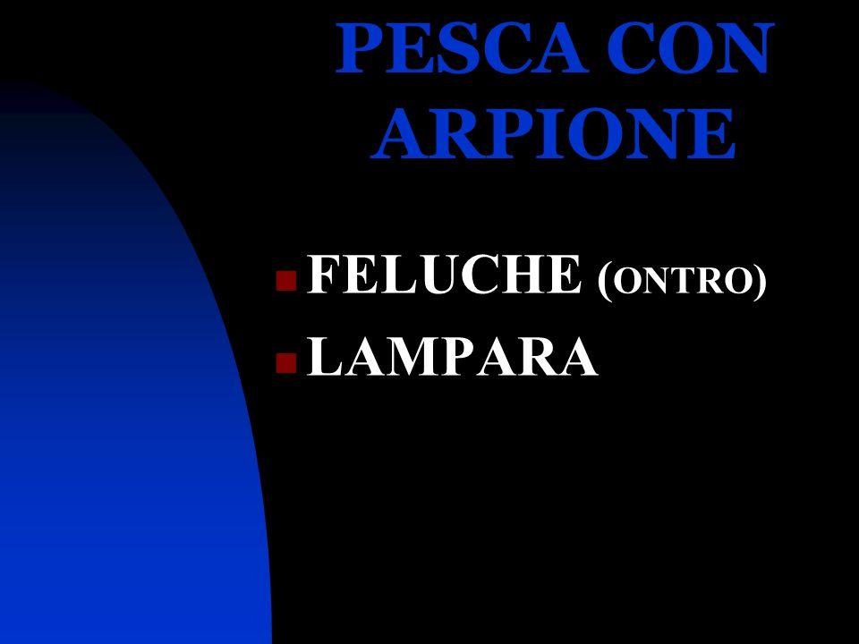 PESCA CON ARPIONE FELUCHE (ONTRO) LAMPARA