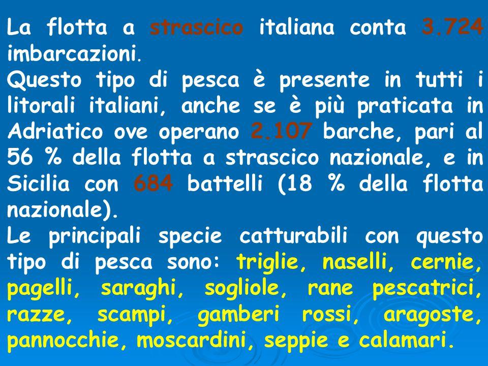 La flotta a strascico italiana conta 3.724 imbarcazioni.