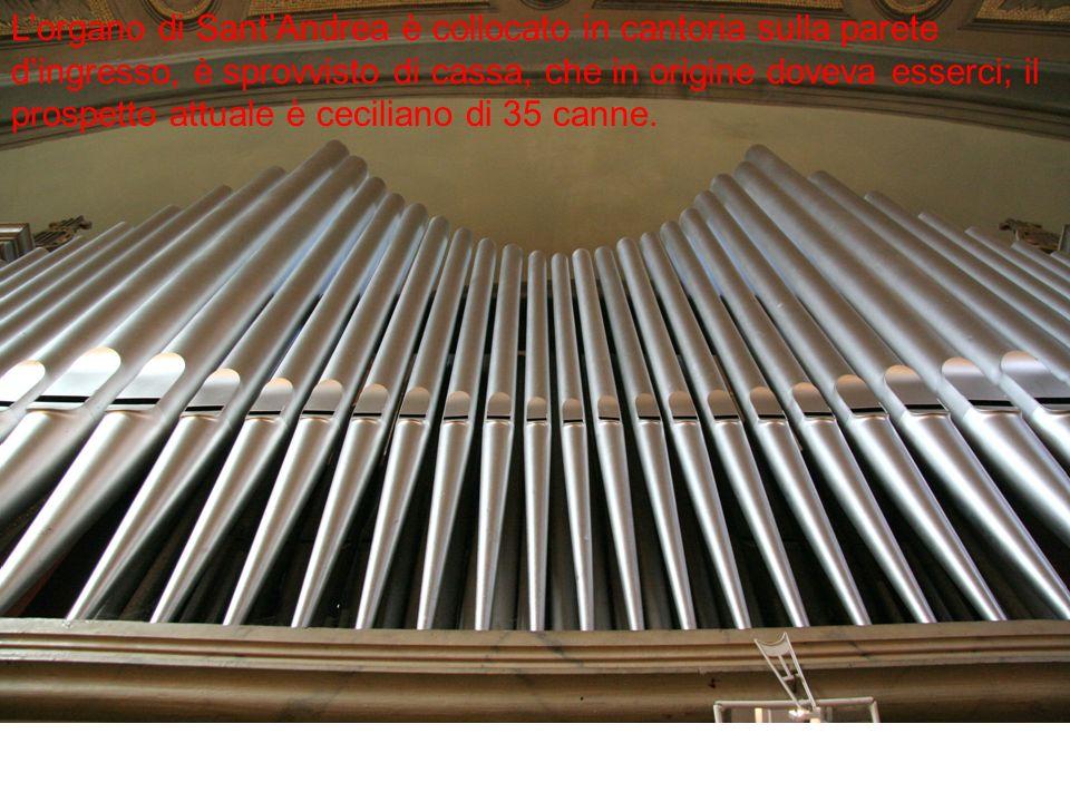 L'organo di Sant'Andrea è collocato in cantoria sulla parete d'ingresso, è sprovvisto di cassa, che in origine doveva esserci; il prospetto attuale è ceciliano di 35 canne.
