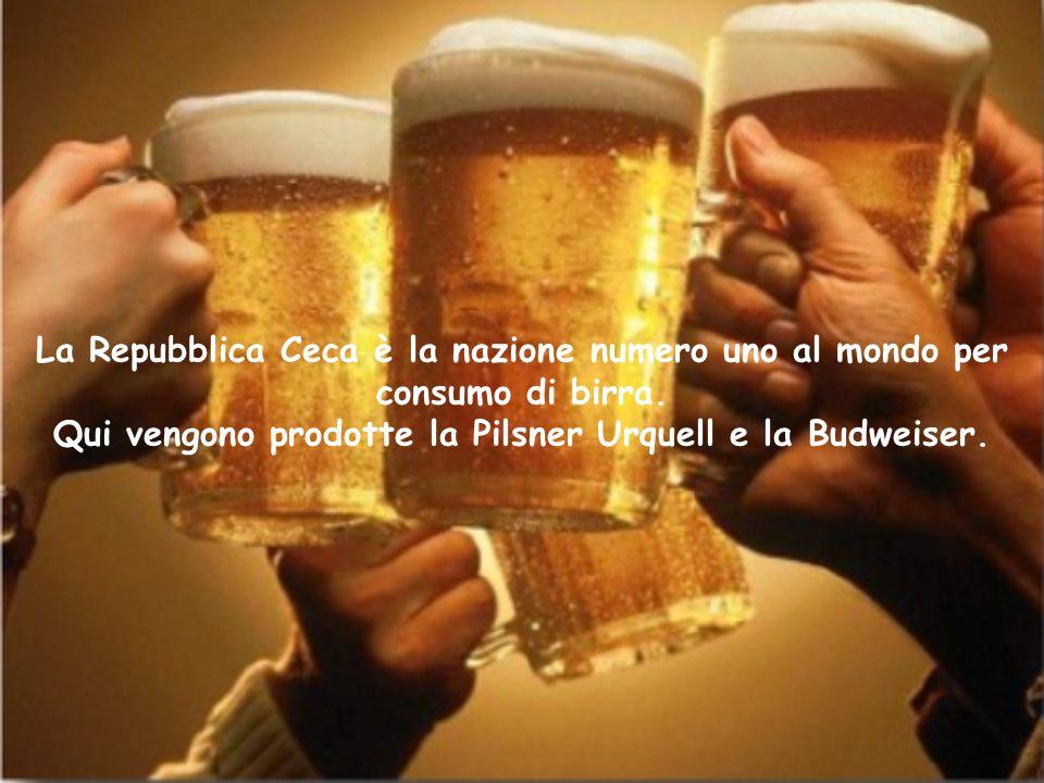 La Repubblica Ceca è la nazione numero uno al mondo per consumo di birra.