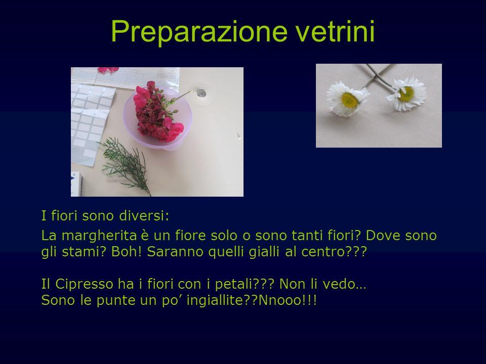 Preparazione vetrini I fiori sono diversi: