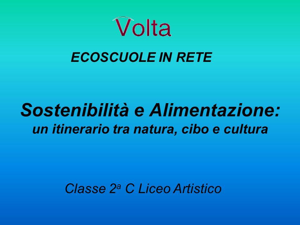 Classe 2a C Liceo Artistico