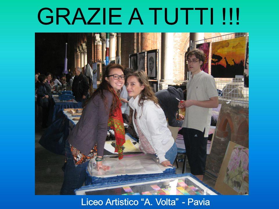 Liceo Artistico A. Volta - Pavia