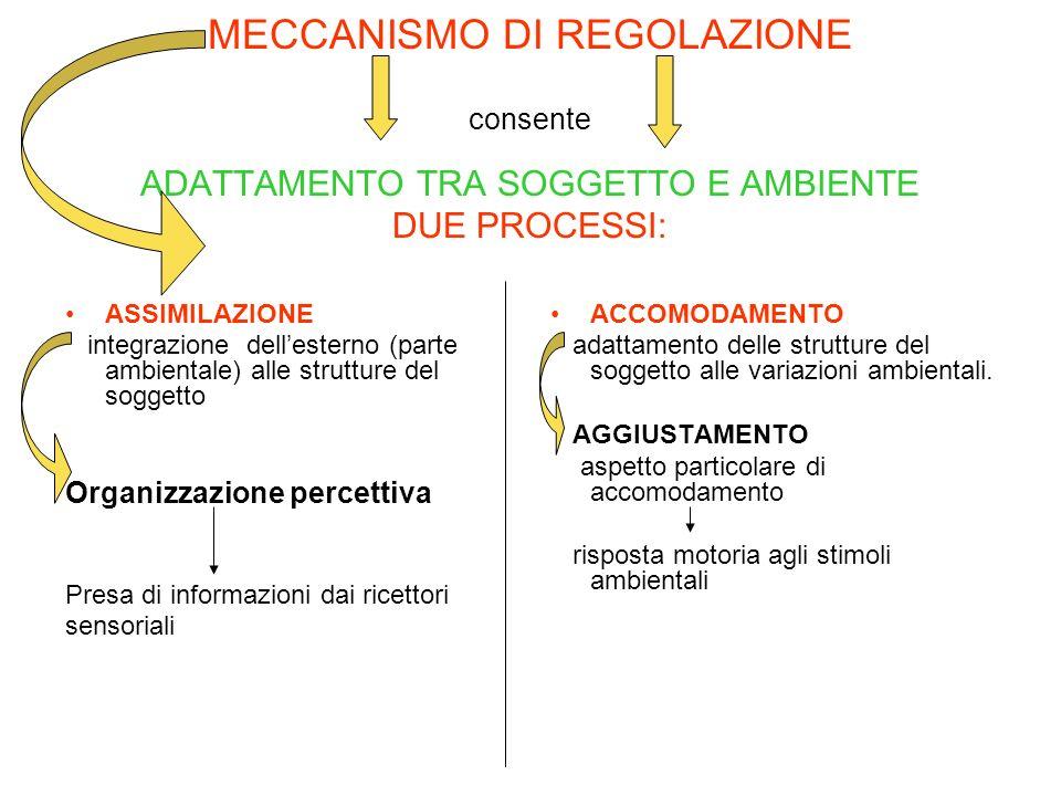MECCANISMO DI REGOLAZIONE consente ADATTAMENTO TRA SOGGETTO E AMBIENTE DUE PROCESSI: