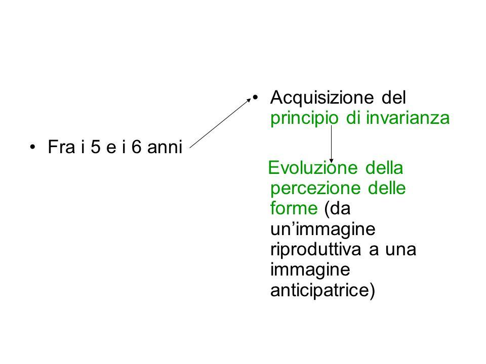 Fra i 5 e i 6 anni Acquisizione del principio di invarianza.