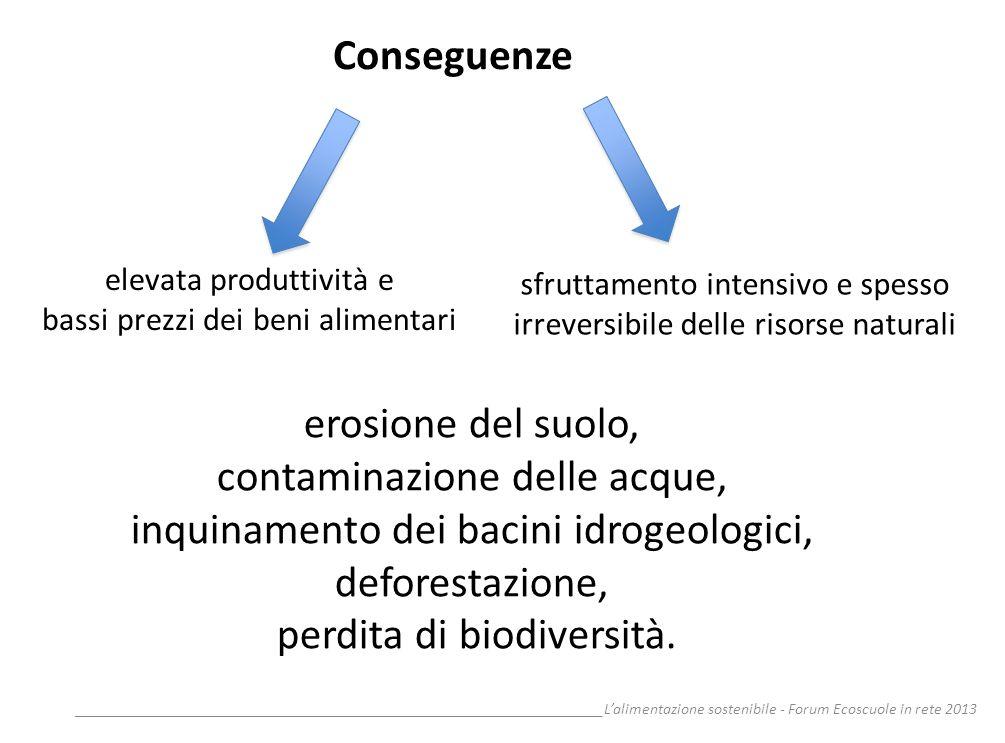 contaminazione delle acque, inquinamento dei bacini idrogeologici,