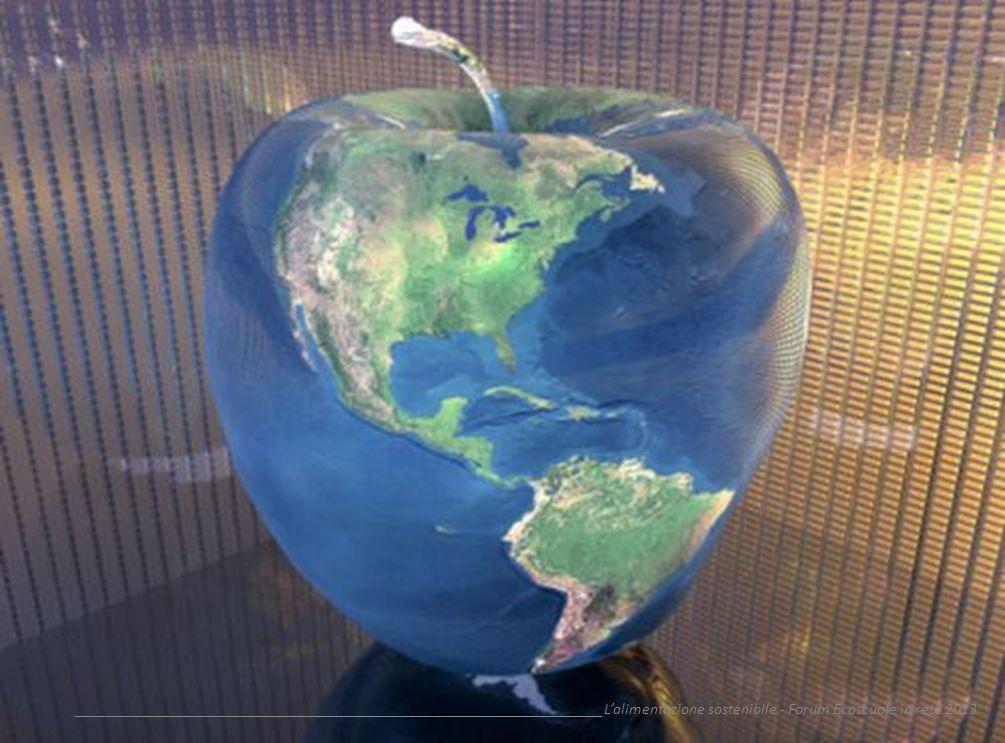 __________________________________________________________________L'alimentazione sostenibile - Forum Ecoscuole in rete 2013