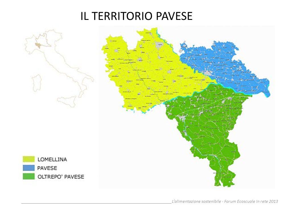 IL TERRITORIO PAVESE __________________________________________________________________L'alimentazione sostenibile - Forum Ecoscuole in rete 2013.
