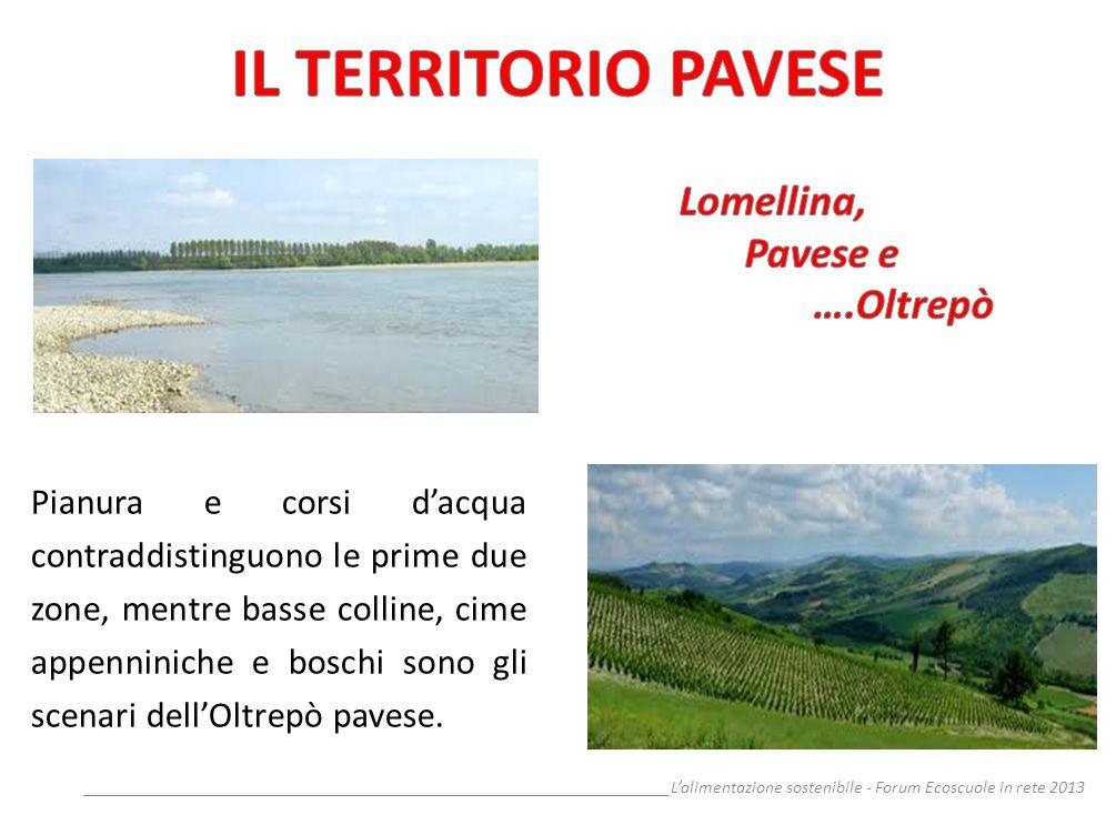 IL TERRITORIO PAVESE Lomellina, Pavese e ….Oltrepò
