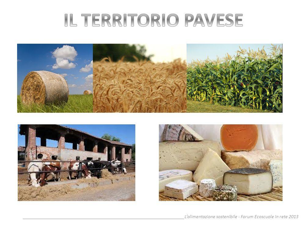IL TERRITORIO PAVESE__________________________________________________________________L'alimentazione sostenibile - Forum Ecoscuole in rete 2013.
