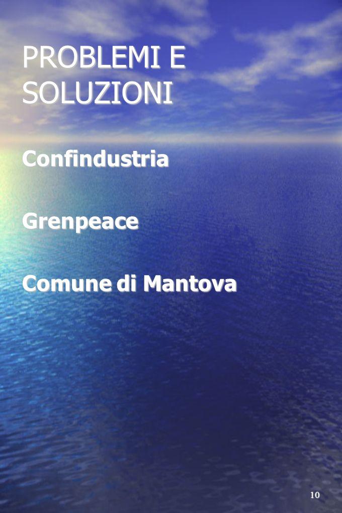 PROBLEMI E SOLUZIONI Confindustria Grenpeace Comune di Mantova