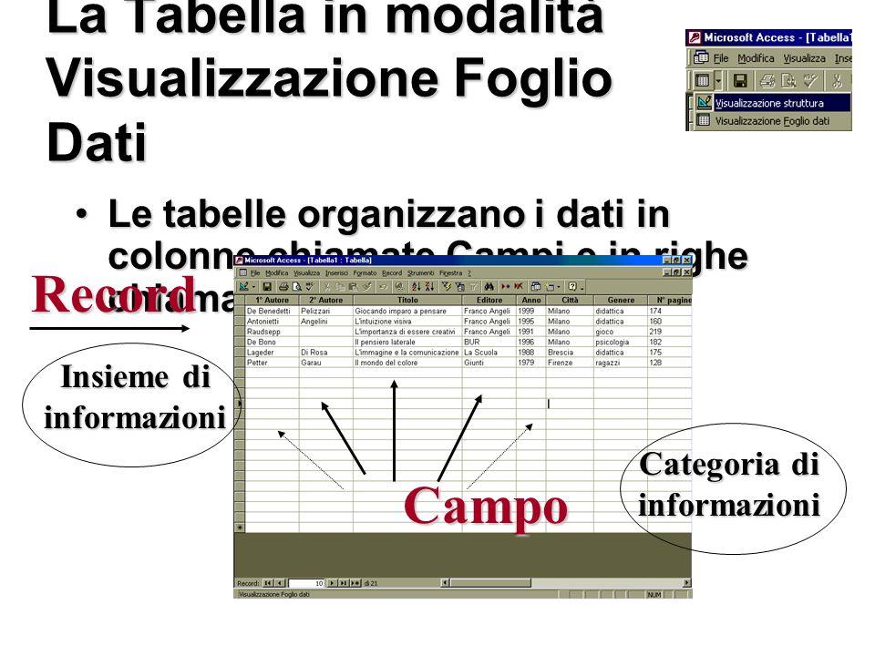 La Tabella in modalità Visualizzazione Foglio Dati