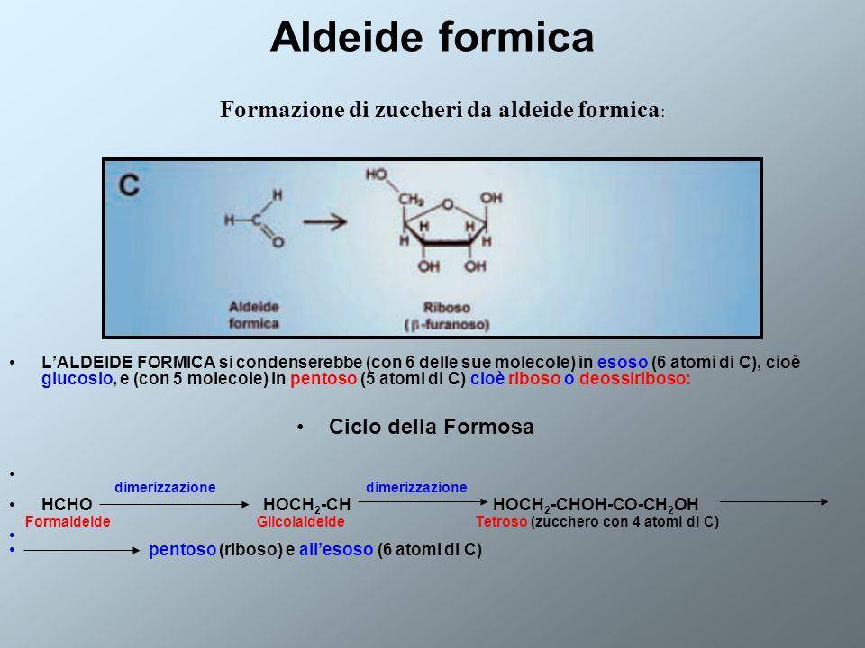 Formazione di zuccheri da aldeide formica: