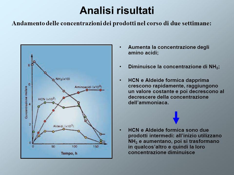 Analisi risultati Andamento delle concentrazioni dei prodotti nel corso di due settimane: Aumenta la concentrazione degli amino acidi;
