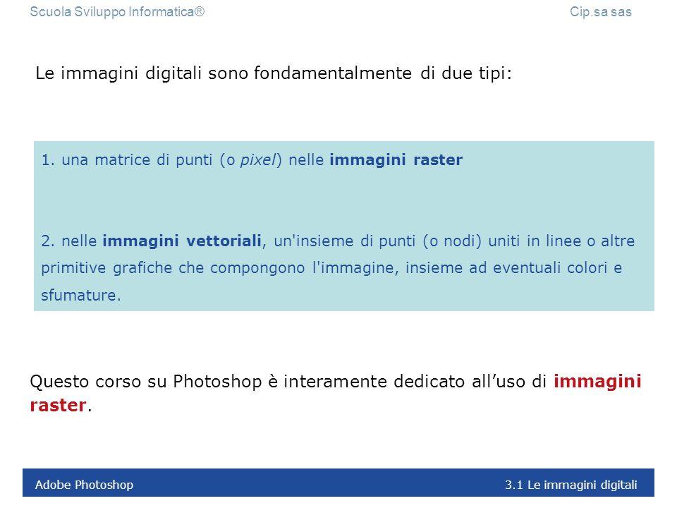 Le immagini digitali sono fondamentalmente di due tipi:
