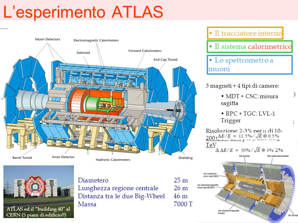 L'esperimento ATLAS Il tracciatore interno Il sistema calorimetrico