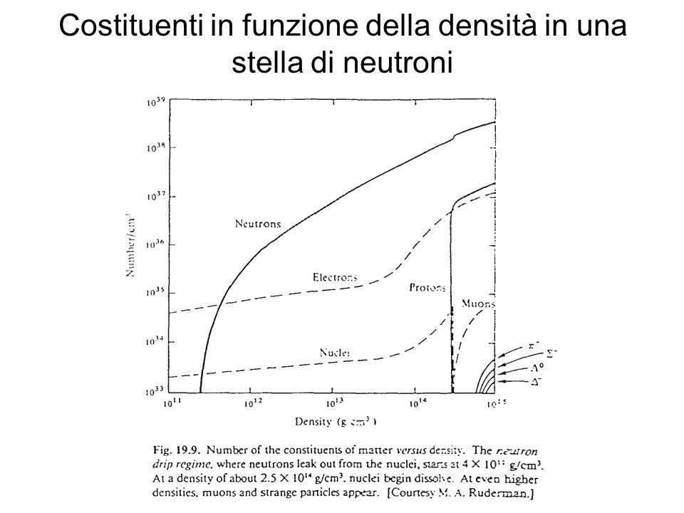 Costituenti in funzione della densità in una stella di neutroni