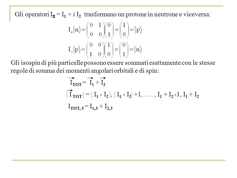 Gli operatori I± = I1 + i I2 trasformano un protone in neutrone e viceversa: